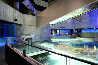 rsz_largeqscnationalaquarium