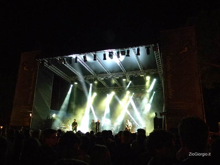 live-festival-9
