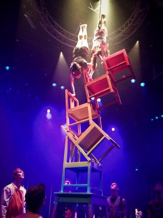 rsz_flying-fruit-fly-circus